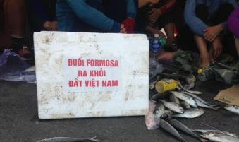 Image result for formosa cút khỏi việt nam